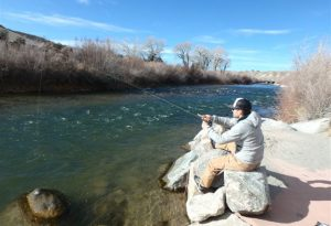 DAWGS fly fishing on the wind river