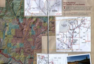 DAWGS Fishing Information-Wind River Fishing Map-1b-6