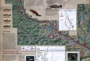 DAWGS Fishing Information-Dwags Map-1b-7