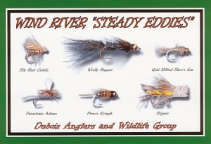 DAWGS Fishing Information - What's working around here for flies?