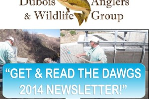 Dubois Anglers and Wildlife Group 2014 Newsletter