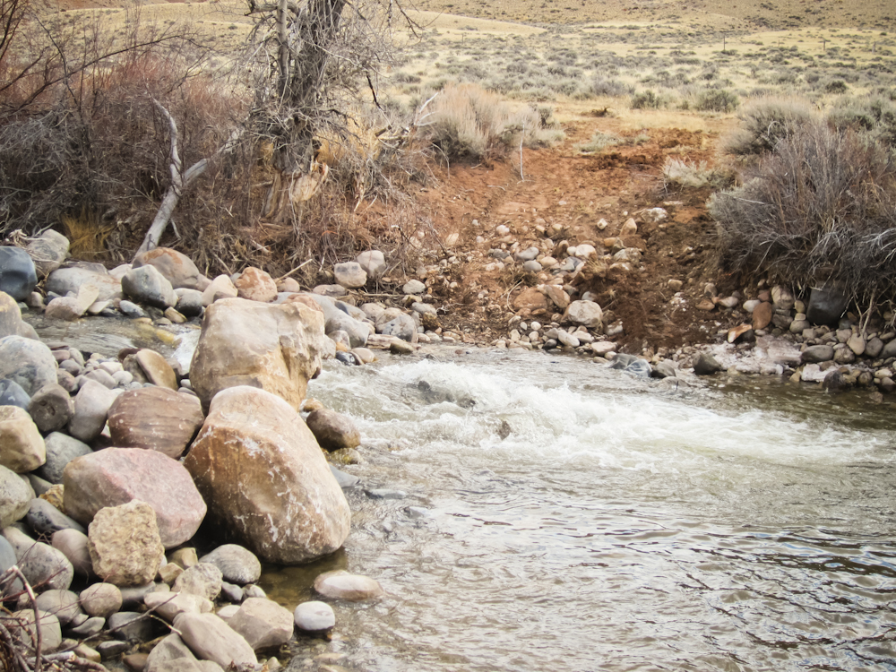 Horse Creek Flow: Before | DAWGS Horse Creek Project April 2012