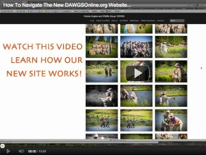 How to Navigate DawgsOnline.org - Video Tutorial
