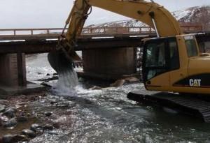 dawgs-sawmill-habitat-project-cat-in -river-4
