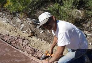 dawgs-sawmill-habitat-project-crew-building-walkway-13