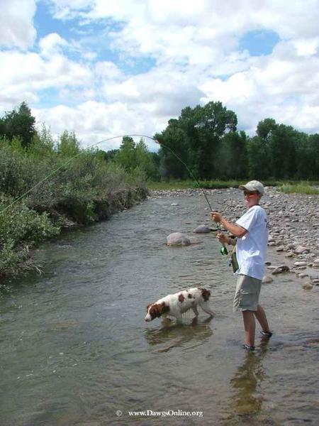 wind river dawgs trophy board-28