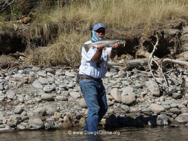 wind river dawgs trophy board-67