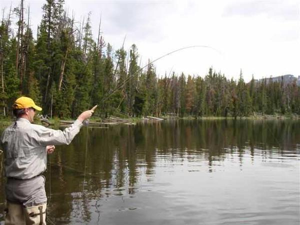 wind river dawgs trophy board2-21